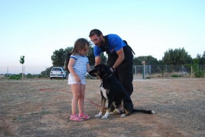 dog-training-k9_0006